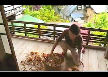 【内田美奈子+小沢とおる+大石保】働き者の農家の未亡人!旦那の兄や弟が迫って来ます。