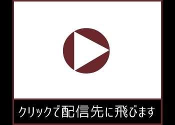 [竹内紗里奈×杉浦ボッ樹]妻のスワップを見て興奮した良人が勃起しSEX